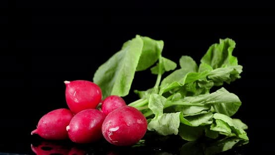 Thumbnail for Radishes with Leaves on the Table Slowly Rotates.
