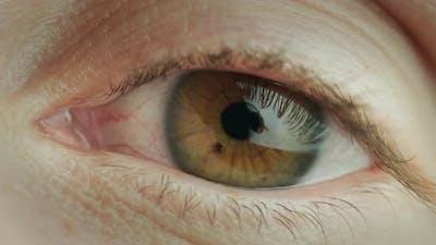 Macro Shot of Middleaged Woman's Brown Eye