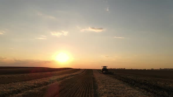 Working In A Wheat Field At Sunset