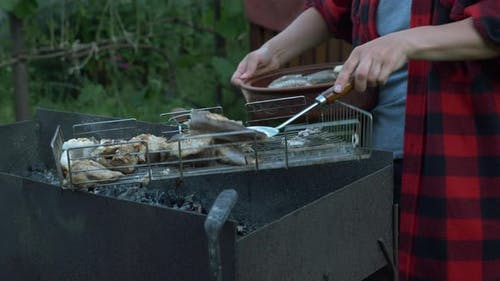 Close up of woman hands put cooked grilled fish on plate. Family on bbq picnic at summer cottage