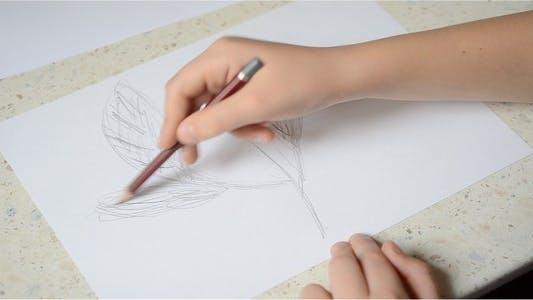 Thumbnail for Drawing 5