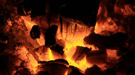 Thumbnail for In the Fire