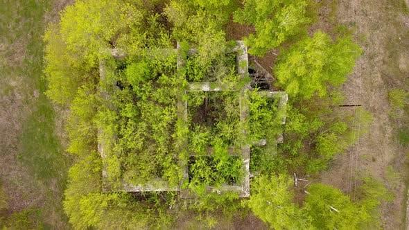 Thumbnail for Abandoned House Ruins
