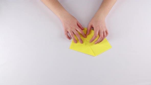 Oiseaux de papier. Origami. Blanc. Laps  de temps
