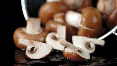 Fresh Mushroom Fall and Broke To Pieces.