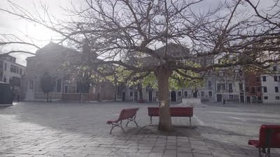 Deserted Lockdown Venice City Square with Branched Bare Tree