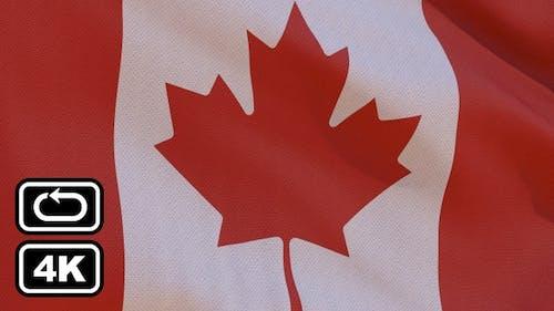 Canada Flag 4K Seamless Loop