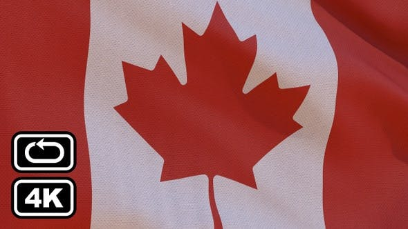 Thumbnail for Canada Flag 4K Seamless Loop