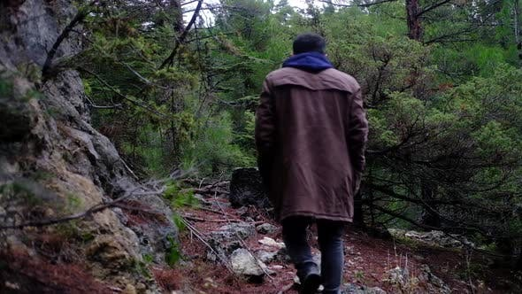 Thumbnail for İmage of Man Walking in Forest in Autumn