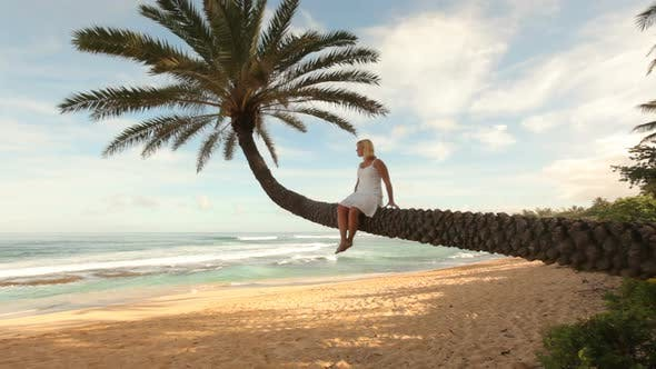 Thumbnail for Woman sits on palm tree overlooking tropical beach