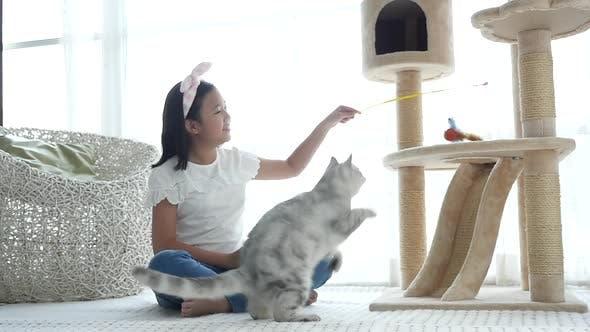 Nettes asiatisches Mädchen spielt mit Kitten
