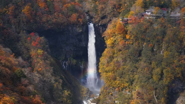 Thumbnail for Waterfall In Forest Autumn