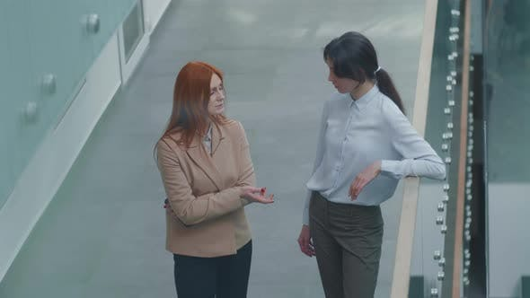 Two Female Colleagues Having Communication