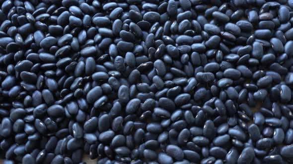 Thumbnail for Black Beans (Rotation)