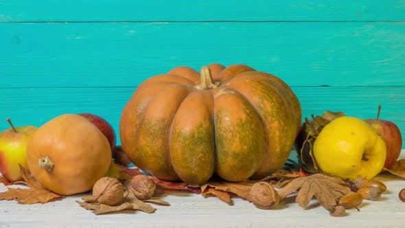 Halloween Still Life with Decorative Pumpkins, Walnuts, Acorns and Autumn Leaves