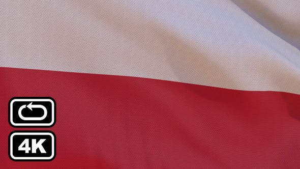 Cover Image for Poland Flag