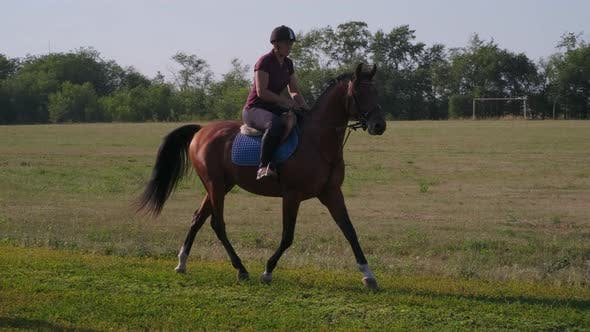 Experienced Female Equestrian Trots in the Countryside
