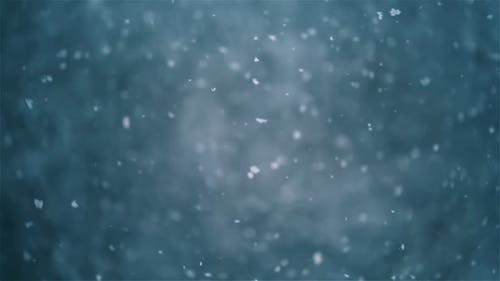 Real Snow Falling in Winter It Is Snowing Bokeh Nature Background