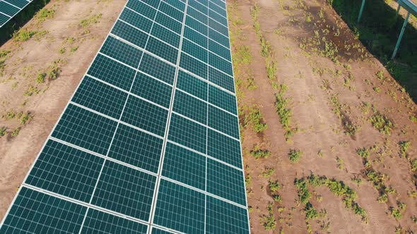 Thumbnail for Solar Farm. Aerial View Solar Power Station. Panels Stand in Row on Green Field