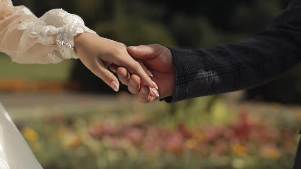 Newlyweds. Hands of Groom with Bride Touch Each Other. Wedding Couple in the Park. Happy Family