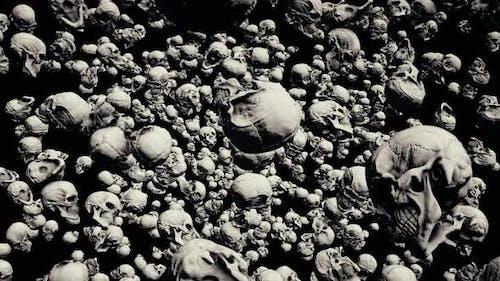 Scary Ancient Skulls