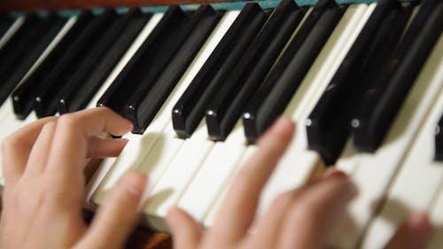 Hands Pianist