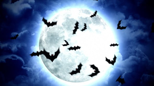 Thumbnail for Halloween Moon and Bats