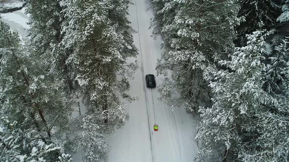 Thumbnail for Aerial View of Car Moving in Winter Forest
