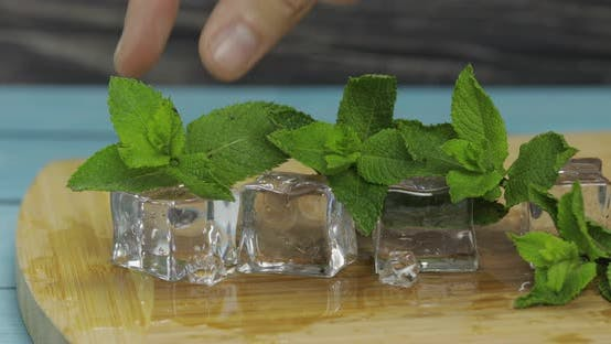 Ice Cubes and Mint Leaves Isolated on Wooden Cutting Board