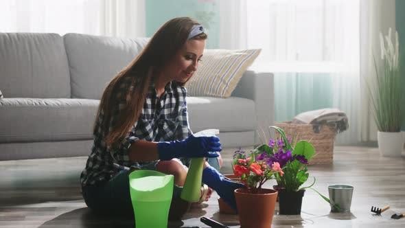 Woman Florist Is Spraying Water On Plants