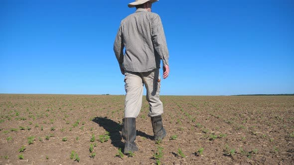 Thumbnail for Young Disappointed Farmer Looking at Small Sprouts of Sunflower on the Field and Feeling Threat of a