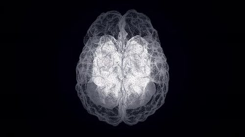 Hologram of the human brain