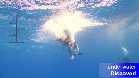 Thumbnail for Divers Preparing to Dive