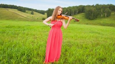 Musician on Green Meadow