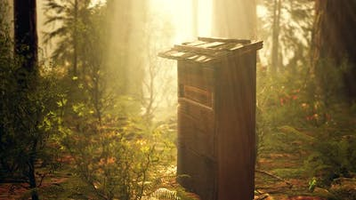 Old Wooden Beehive in Forest in Fog