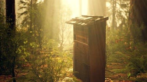 Alter hölzerner Bienenstock im Wald im Nebel