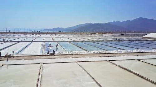People Work on Salt Plantation Divided To Grounds