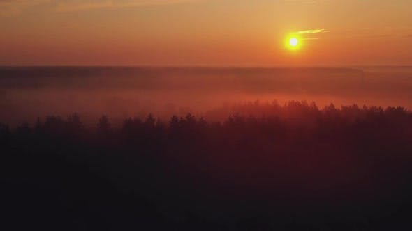 Thumbnail for The Sun Rises Over the Pine Forest with Fog