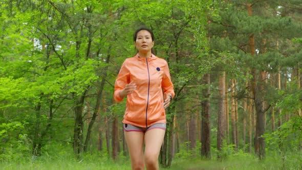 Thumbnail for Asian Female Jogger Running through Pine Woods