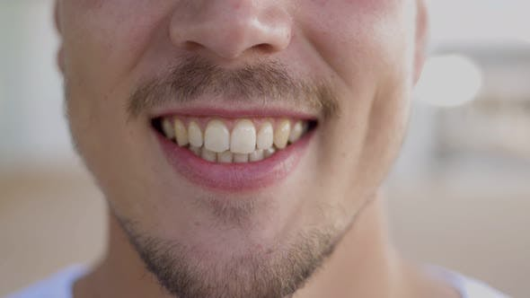 Thumbnail for Cropped Shot of Smiling Bearded Man
