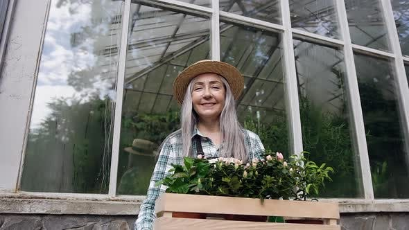 Thumbnail for Woman in Hat Standing Near Greenhouse Wall and Holding in Hands Box