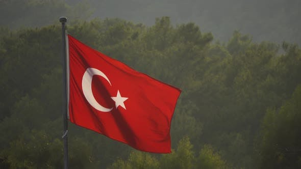 Thumbnail for Turkish Flag Blowing in the Wind Over Green Trees