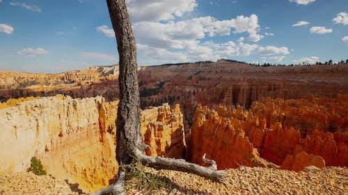 Die unglaublichen Felsformationen im Bryce Canyon