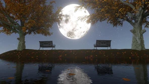 Thumbnail for Autumn Moonlight