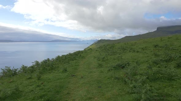 Thumbnail for Green grass and plants on a coastline