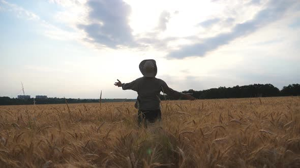 Follow To Happy Young Agronomist Raising Hands While Running Through Wheat Field. Unrecognizable