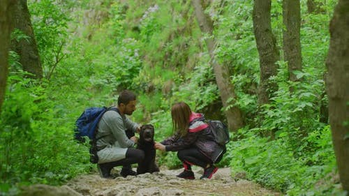 Hikers petting a dog