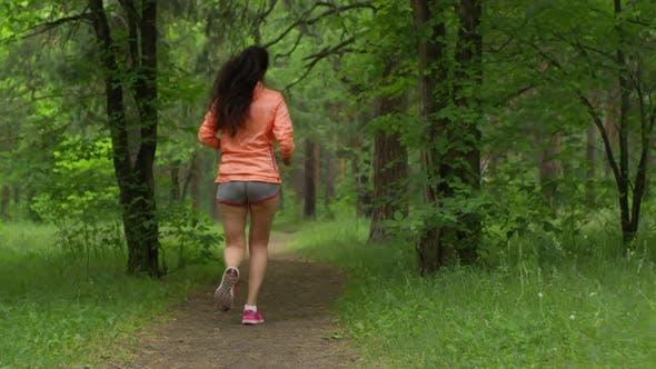 Fit Frau Laufen auf Fußweg in Green Forest