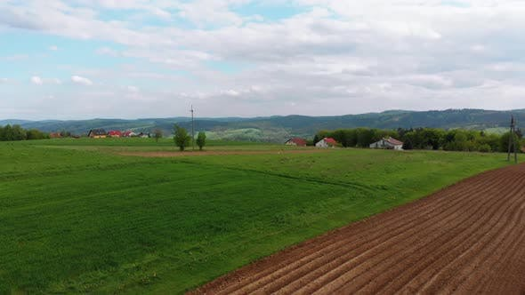 Aerial Drone View of Green Fields, Hills and Trees in a Village with Small Houses. Poland