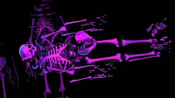 Thumbnail for Purple broken skeletons